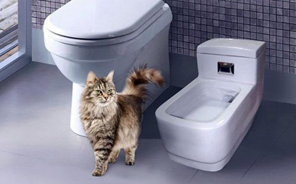 Лоток для кошек Автоматический туалет Kopfgescheit — отзывы