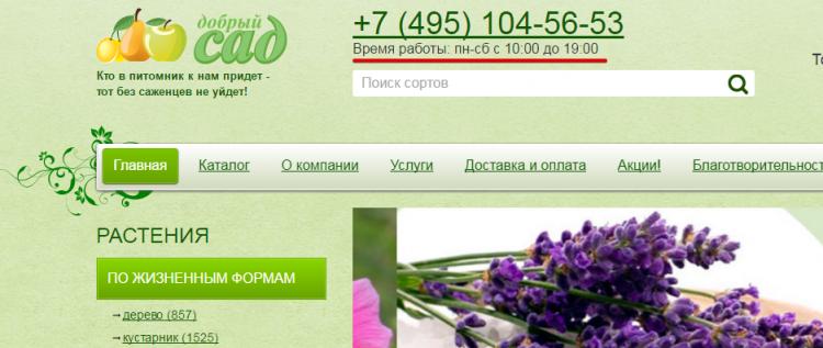 Dobri-sad.ru — Питомник саженцев «Добрый сад» — отзывы