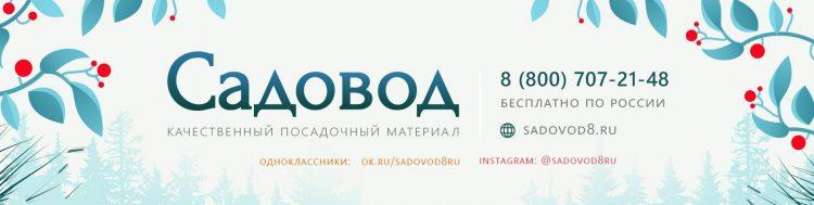 Sadovod8.ru — интернет-магазин посадочного материала — отзывы