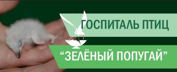 Госпиталь для птиц «Зеленый попугай» (Россия, Балашиха) — отзывы