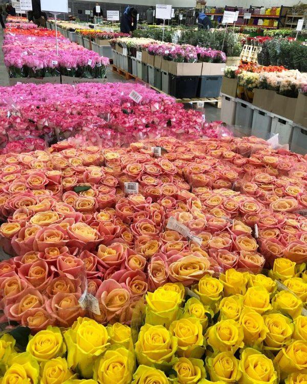 Оптовый центр цветов «Флорэвиль» (Россия, Москва) — отзывы