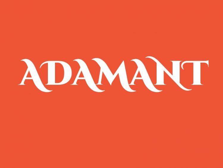 Сервисный центр «Адамант» — отзывы