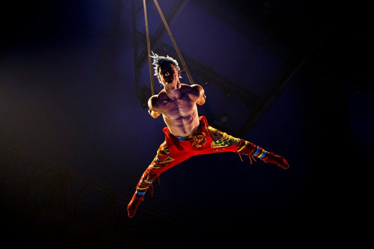 Цирковое шоу «OVO» Cirque Du Soleil (Россия, Москва) — отзывы