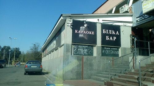 Бар-караоке «Белка» (Украина, Ирпень) — отзывы