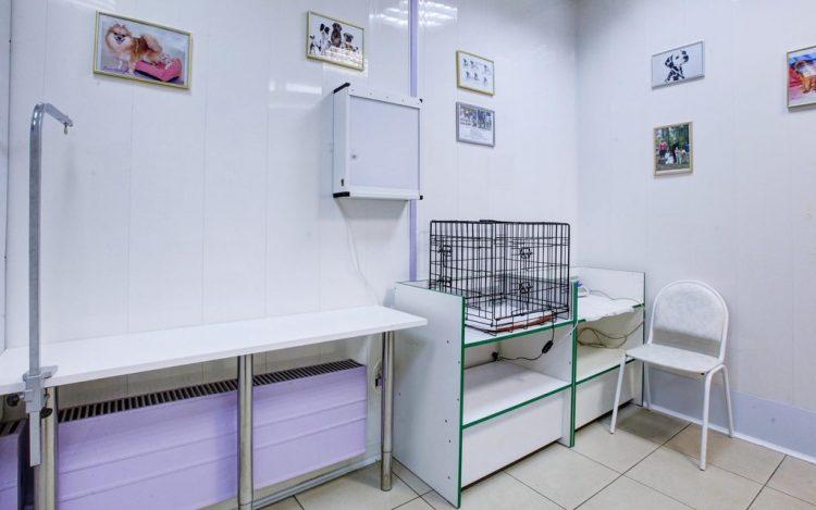 Ветеринарная клиника «ВетКэт» (Россия, Москва) — отзывы