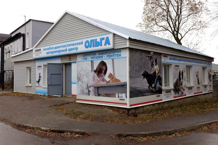 Ветеринарная клиника «Ольга» (Россия, Владимир) — отзывы