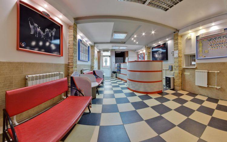 Многопрофильный центр ветеринарной медицины «21 век» (Россия, Омск) — отзывы