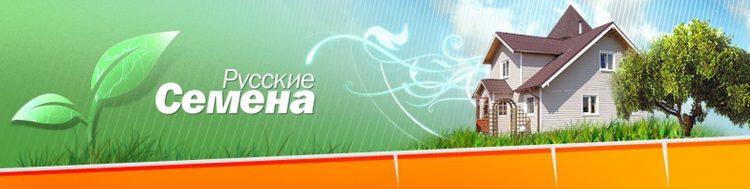 Интернет-магазин «Русские семена» (Ruscemena.ru) — отзывы