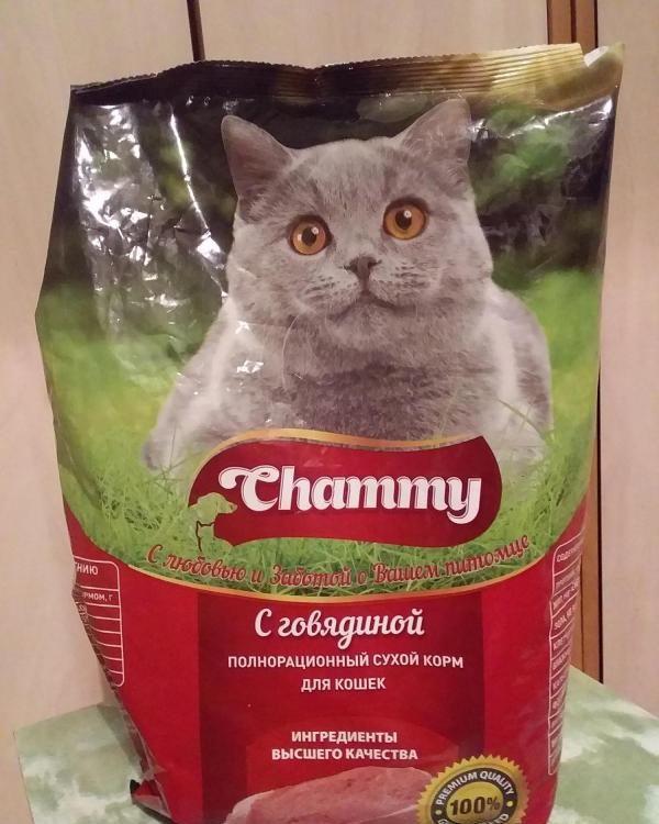 Сухой корм для кошек Chammy — отзывы