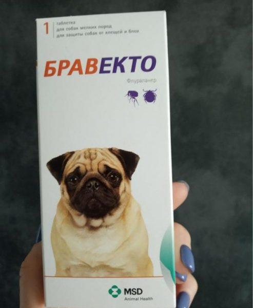 Таблетка для собак от блох и клещей MSD Бравекто — отзывы
